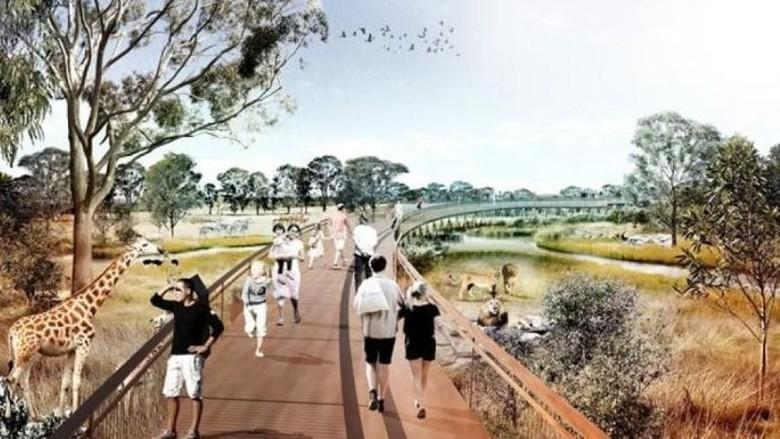 Kebun Binatang Tanpa Kandang Akan Dibuka di Sydney