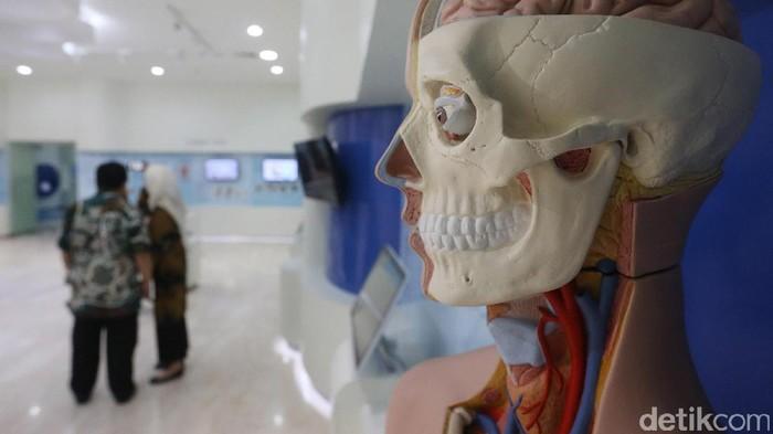 Alat peraga di museum Fakultas Kedokteran Universitas Indonesia (Foto: Ari Saputra)