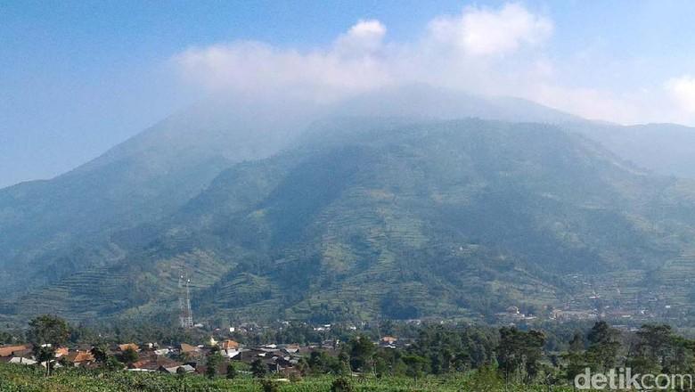 Hutan Gunung Merbabu di Wilayah Boyolali Terbakar