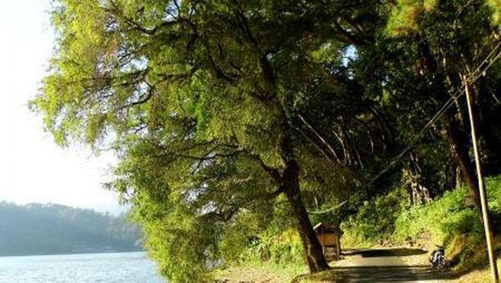 Ponorogo Punya Danau Secantik Ini