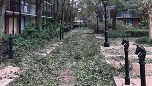 Foto: Disney World Setelah Badai Irma, Bak Kota Hantu