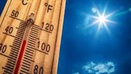 California Terancam Alami Kebakaran Lahan Akibat Suhu Panas