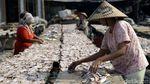 Kemarau, Produksi Ikan Asin Meningkat