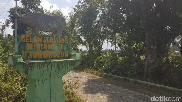Lokasi TN Ujung Kulon berada di ujung paling barat Pulau Jawa. Tepatnya, di Kecamatan Sumur dan Cimanggu, Kabupaten Pandeglang, Banten. (Bahtiar Rifai/detikcom)