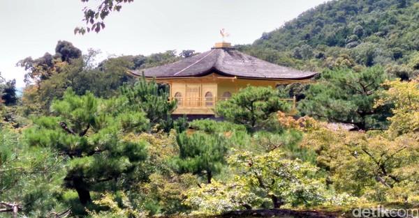 Di tahun 1397, seorang shogun bernama Ashikaga Yoshimitsu tertarik dan membelinya dari Saionji. Ashikaga lalu mendirikan komplek vila bernama Kitayama-den. Singkat cerita, vila ini akhirnya diubah menjadi kuil, setelah Ashikaga wafat. Sekarang, kuil emas ini jadi destinasi yang sayang untuk dilewatkan traveler yang liburan ke Kyoto, Jepang (Hans/detikTravel)