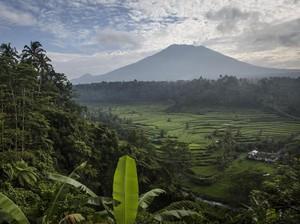 Catat! Ini 8 Tips Siaga Ketika Gunung Agung Meletus dari BNPB