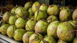 Belakangan, masyarakat dihebohkan dengan informasi tentang nata de coco campur pupuk urea. Sebenarnya, untuk apa ada pupuk dalam proses pembuatannya?