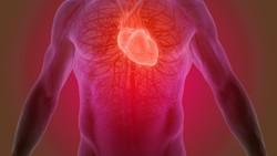 Seseorang yang menemukan 8 gejala ini harus waspada. Pasalnya ini adalah gejala dari penyakit Fibrilasi Atrium (FA) yang dapat menyebabkan stroke.