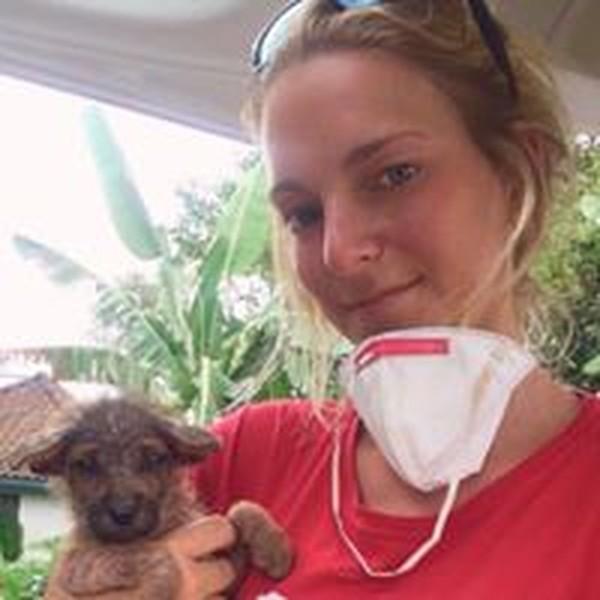 Kelompok non profit Australia, Pusat Rehabilitasi Adopsi Anjing Bali atau BARC telah bergabung dengan tim amal hewan lainnya, termasuk Hewan Hewan Indonesia (Bali Dog Adoption Rehabilitation Centre/Facebook)