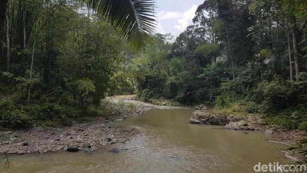 Alam dijaga dengan baik di Baduy (Bahtiar/detikTravel)