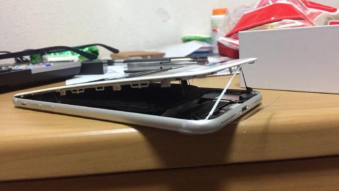 Foto: Twitter.com/Magokoro0511