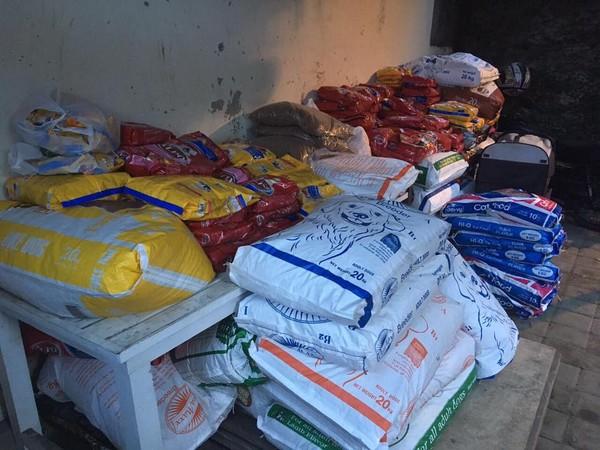 Tim evakuasi hewan ini juga membuka donasi bagi mereka yang ingin membantu dalam bentuk dana atau persediaan makanan bagi para hewan-hewan terlantar ini (Bali Dog Adoption Rehabilitation Centre/Facebook)