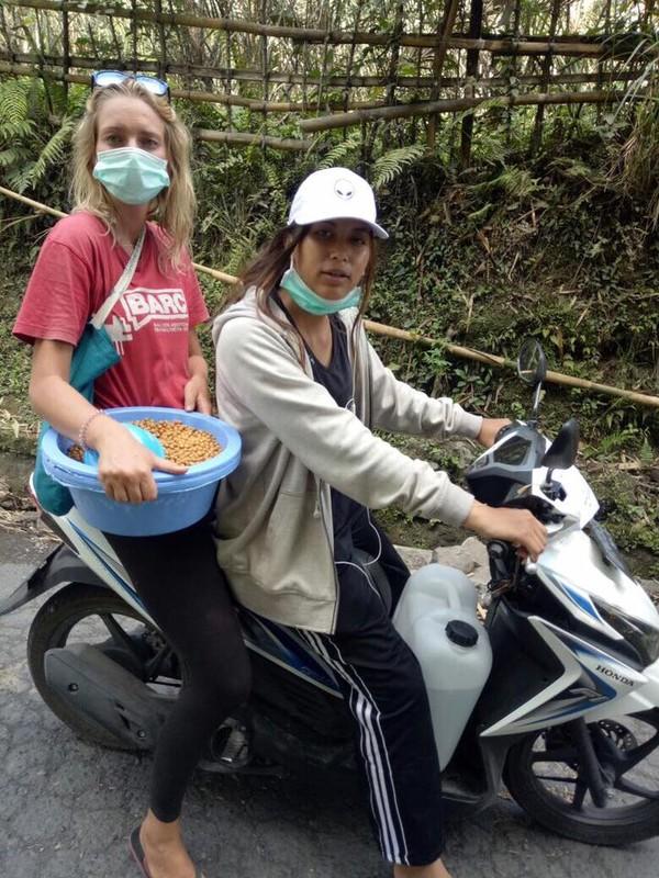 Kelompok evakuasi hewan ini menyusuri sepanjang jalan desa. Tak hanya memberi makan, mereka pun menolong hewan yang di rantai dan dikurung. Supaya saat terjadi erupsi, hewan-hewan ini dapat lari menyelamatkan diri (Bali Dog Adoption Rehabilitation Centre/Facebook)