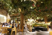 Restoran bertema hutan bernama Madagaskar yang ada di Plaza Senayan.