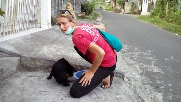 Tim BARC yang turun langsung ke jalan dan memberi makan para anjing yang terlantar (Bali Dog Adoption Rehabilitation Centre/Facebook)