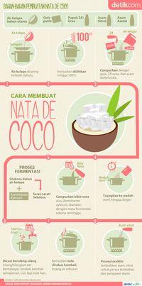 Infografis: Proses Pembuatan Nata de Coco dan Fungsi Urea di Dalamnya