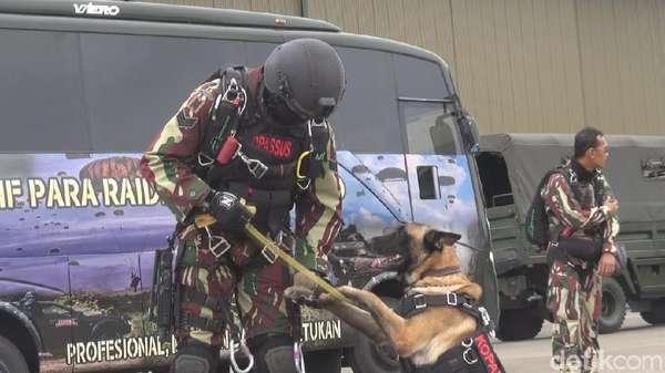 Terjun Payung Bawa Anjing, Kopassus Pecahkan Rekor Muri