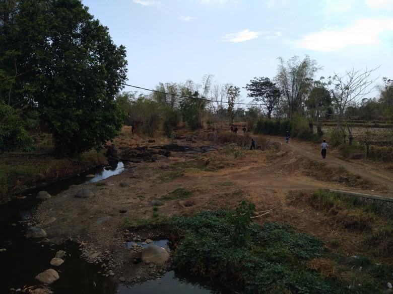8 Kecamatan di Probolinggo Masuk Peta Rawan Kekeringan Kritis