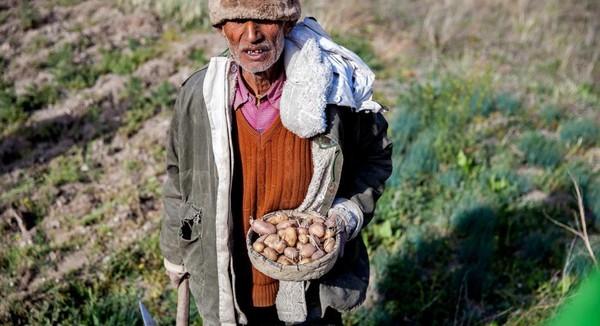 Di desa terbesar yang pernah ada di Lembah Johar, Milam ada pos polisi perbatasan Tibet terbesar. Dua dari desa-desa yang ditinggalkan, yakni Panchu dan Ghangar adalah titik awal perjalanan sejauh 6 kilometer ke Nanda Devi. Inilah gunung tertinggi kedua di India dengan puncaknya mencapai 7.816 meter di atas permukaan laut (Dok. Himanshu Khagta/BBC Travel)