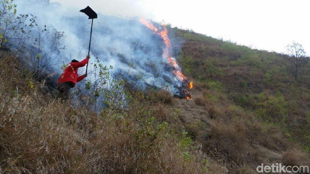 Taman Nasional Gunung Rinjani Terbakar