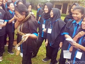 Melihat Kegelian Pelajar SMKN 3 Sukabumi Saat Bermain dengan Ular