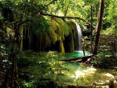 Kawasan Samota di NTB Akan Dijadikan Cagar Biosfer Dunia