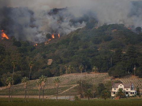 Kebakaran hutan di Sonoma, California