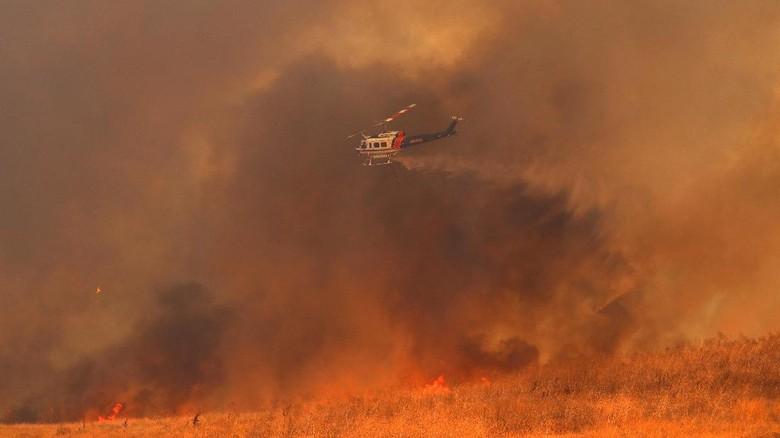 10 Orang Tewas dalam Kebakaran Hutan California, 20 Ribu Mengungsi