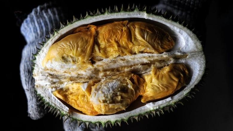 Terungkap! Misteri di Balik Bau dan Rasa Durian yang Sangat Tajam