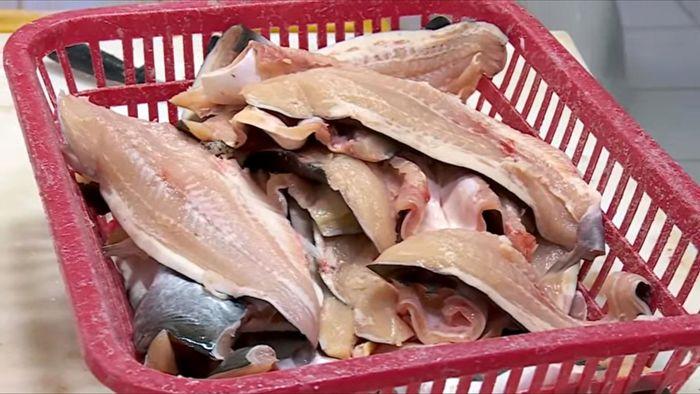 Fillet ikan dori tersebut diketahui mengandung zat tripolyphosphate, yang melebihi ambang batas dan dapat membahayakan kesehatan konsumen. (Dok BKIPM).