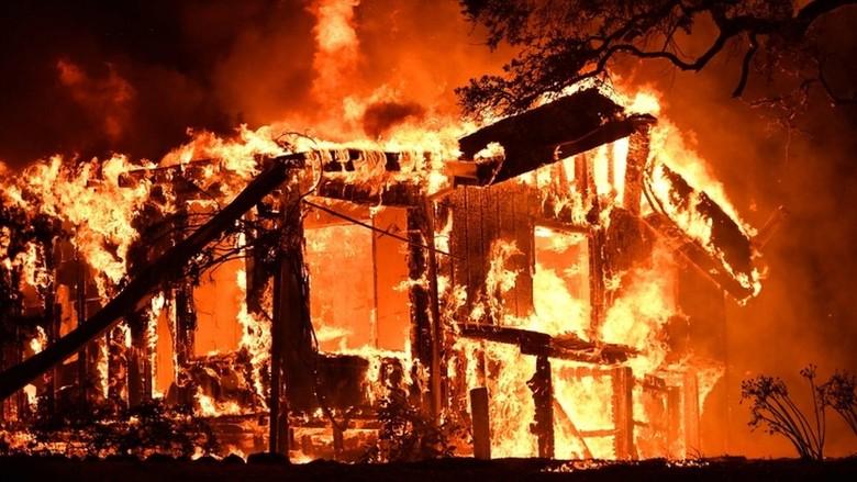 Sentra Anggur California Terbakar, 10 Tewas dan Puluhan Ribu Mengungsi