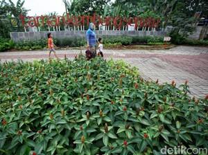 Taman Kembang Sepatu Kurang Fasilitas