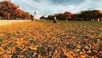 White House di Washington DC./