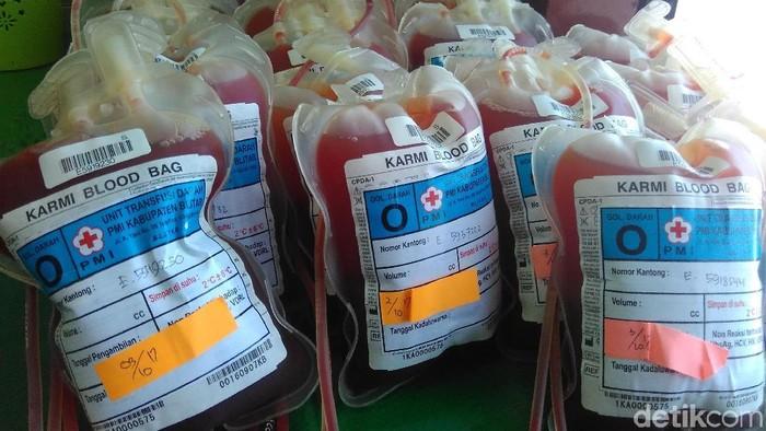 kantong darah dimusnahkan PMI Blitar