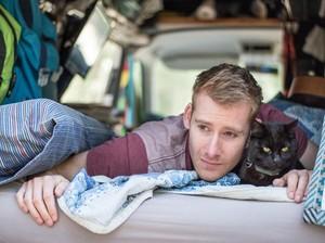 Cowok Ganteng Keliling Australia Bareng Kucing