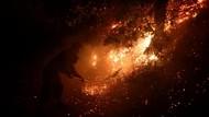 Ratusan Warga Terpaksa Dievakuasi Akibat Kebakaran Hutan di Spanyol