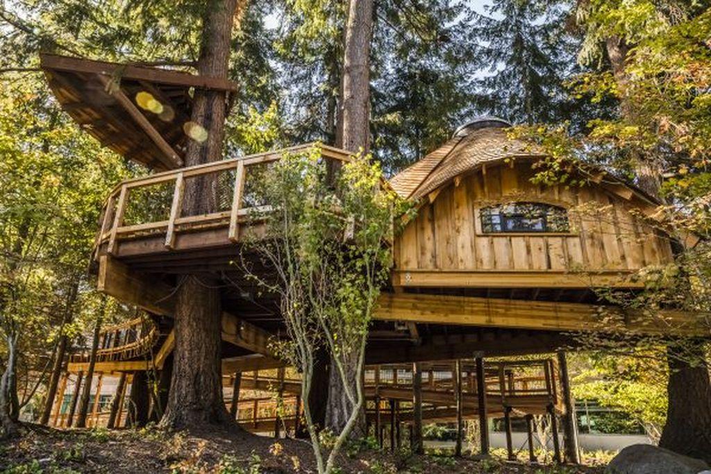 Raksasa software itu baru saja membangun beberapa rumah pohon sungguhan di markas besarnya di Redmond, Washington. Rumah pohon ini terutaam ditujukan untuk rapat para karyawannya.(Foto: Dok. Microsoft)