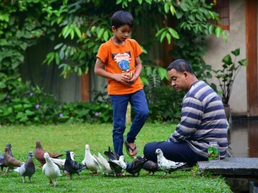 Memberi makan burung bersama si kecil Ismail. (Foto: Instagram @aniesbaswedan)