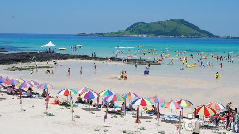 wisata menarik bersama keluarga di pulau jeju
