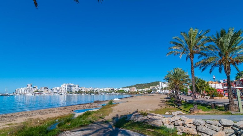 St Antoni de Portmany - city by A Balearic Island bay, row of palms lines the beach in Ibiza.  Morning walk along in the waterfront in Balearic Islands, Spain.