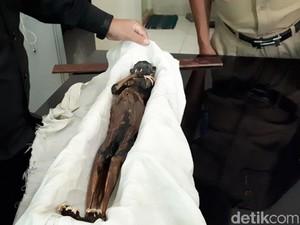 Jenglot Menyeramkan dari Pantai Surabaya Diduga Buatan Manusia