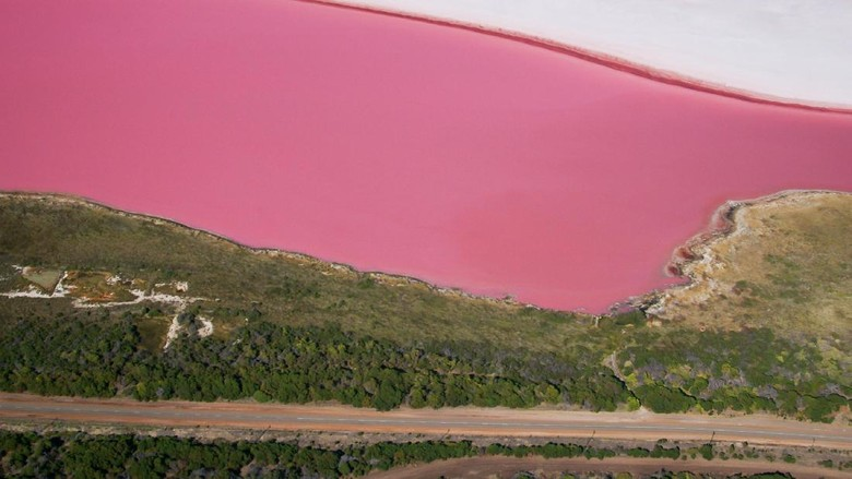 Aerial view of the naturally pink Hutt Lagoon near Port Gregory in Western Australia. The pink colour is caused mainly by microscopic algae (Dunaliella salina), which thrive in the supersaline water. The algae are farmed in ponds in other parts of the lake; they are harvested for their pigments, which are used as food additives and natural colours.