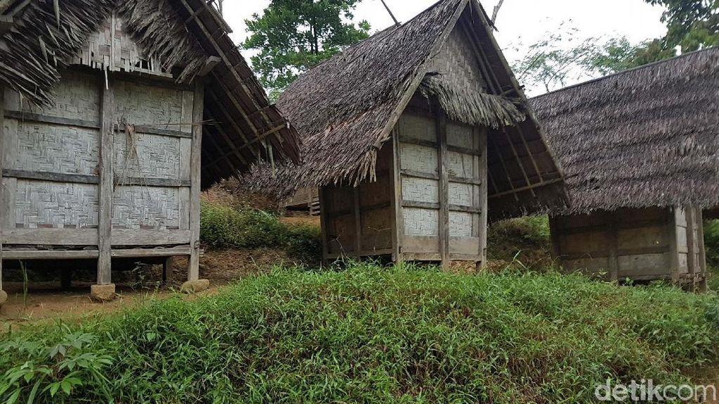 Rumah Adat Baduy Tetap Kokoh Meski Ada Gempa M 6,9, Apa Rahasianya?