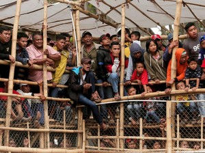 Kritik untuk Riuh Tawa Warga yang Saksikan Adu Bagong
