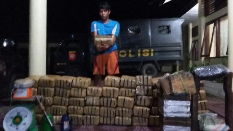Tepergok Bungkus 410 Kg Ganja, Petani di Aceh Ditangkap