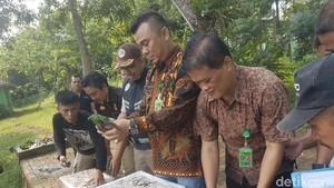 245 Burung Sitaan BKSDA Dilepaskan di Cagar Alam Rawa Danau