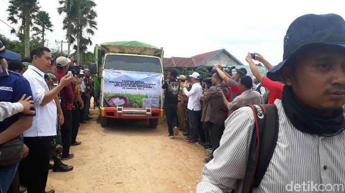 Indonesia mengekspor 25 ton beras ke Malaysia./Foto: Fadhly Fauzi Rachman/detikFinance