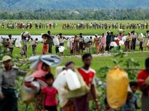 Bangladesh Terima 10 Ribu Rohingya yang Tertahan di Perbatasan