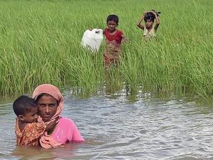 Tiap Pekan 12.000 Anak-anak Rohingya Tiba di Kamp Bangladesh