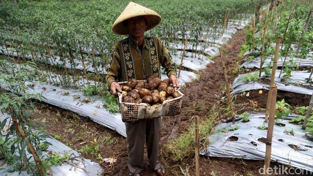 Kembangkan Alat Pertanian, Kementan Gandeng IPB